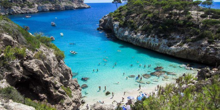 Mallorca er kendt for deres grønne olivenlunde
